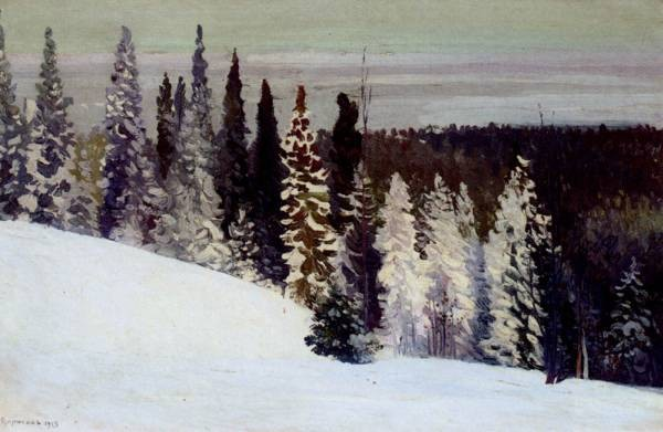 Fir Trees In A Winter Landscape
